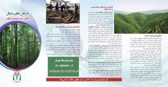 جلوگیری از نابودی جنگل های شمال کشور